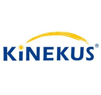 kinks logo